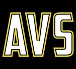 AV Seals Staffing
